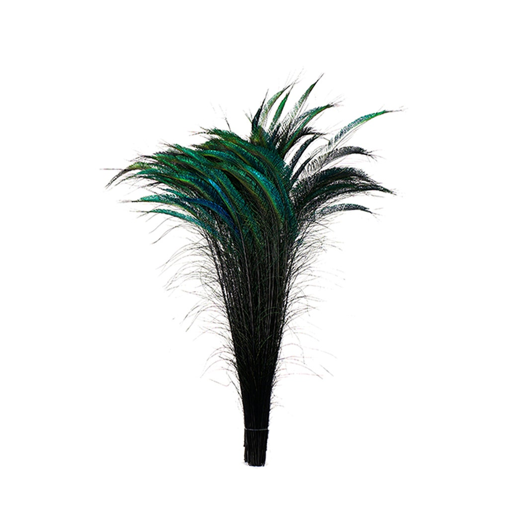 """100 Peacock Sword Feathers 20-25/"""" L Bleached /& Dyed 21 in colors  USA Seller"""