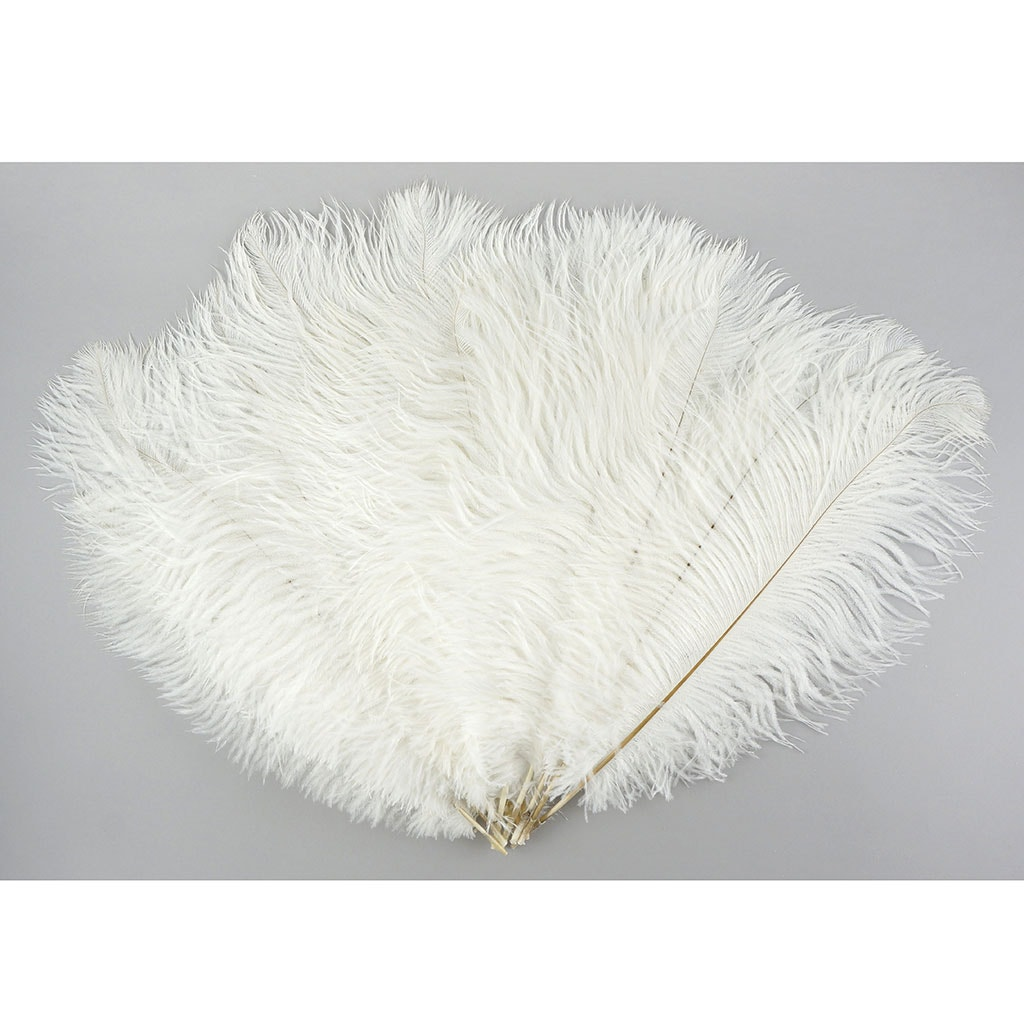 Ostrich Tail Centerpiece Feathers White Ostrich Feathers 13 to 18 inches long USA Shop